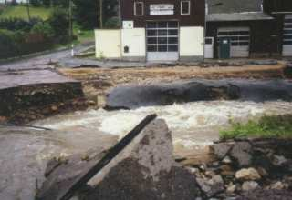 Photographed after Rain on Saturday August 2002